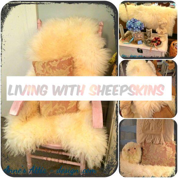 Sheep skin collage